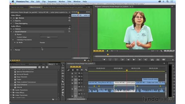 Adding and adjusting audio effects: Premiere Pro CC Essential Training (2014)