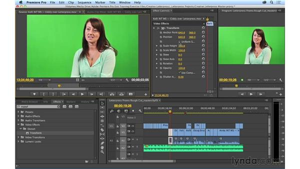 Adding effects to master clips: Premiere Pro CC Essential Training (2014)