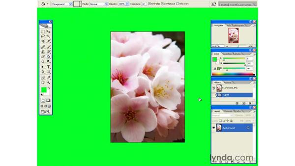 Changing the Matte Color: Photoshop CS2 Essential Training
