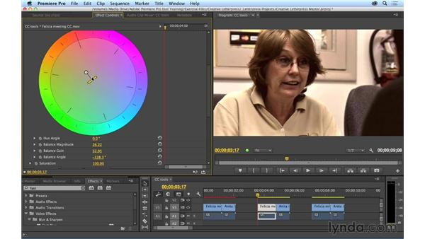 Taking a brief look at the different color correction tools in Premiere Pro: Premiere Pro CC Essential Training (2014)