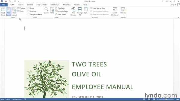 Changing the document view: Word 2013 Power Shortcuts