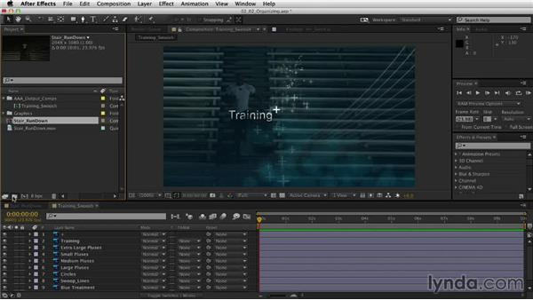 Organizing projects: After Effects CC Essential Training