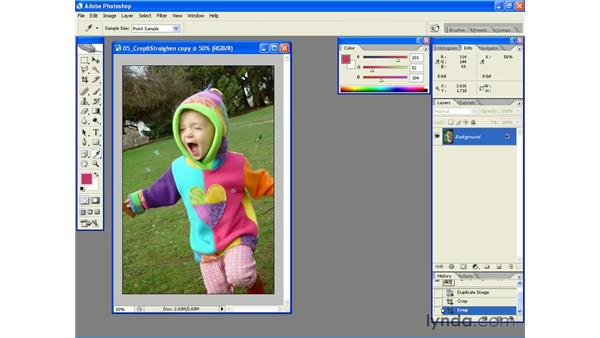 Sampling Colors with the Eyedropper Tool: Photoshop CS2 Essential Training