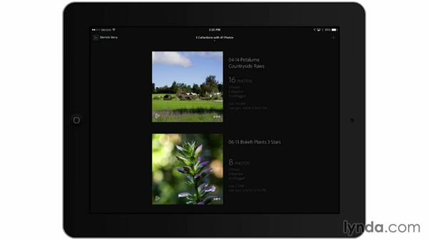 Using Lightroom mobile on the iPad: Managing Your Mobile Photos