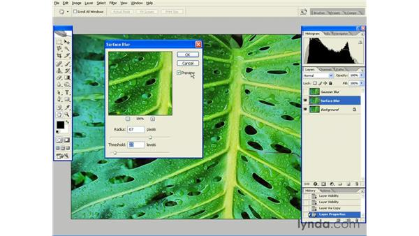 Gaussian, Surface and Lens Blurs: Photoshop CS2 Essential Training
