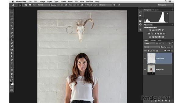 Retouching an image with the Clone Stamp (CC 2014): Photoshop CC for Photographers: Fundamentals