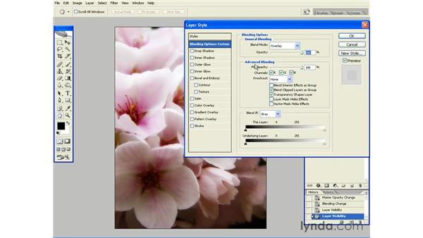 Creating a Diffused Contrast Glow with Overlay: Photoshop CS2 Essential Training
