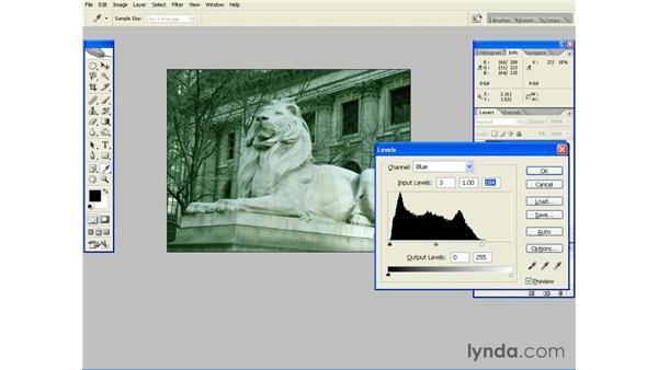 Removing a Color Cast with Auto Color: Photoshop CS2 Essential Training