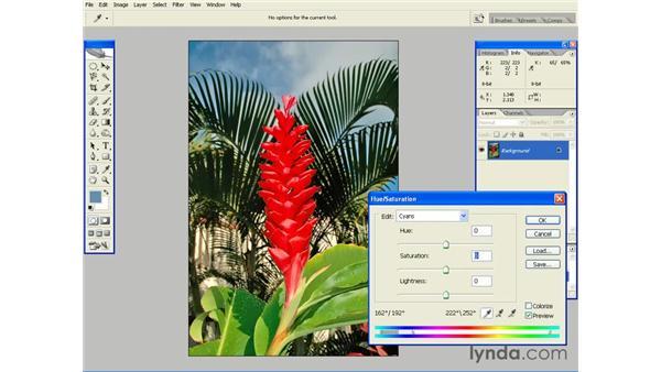 Selective Desaturation: Photoshop CS2 Essential Training