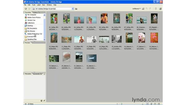 Accessing the Bridge: Photoshop CS2 Essential Training
