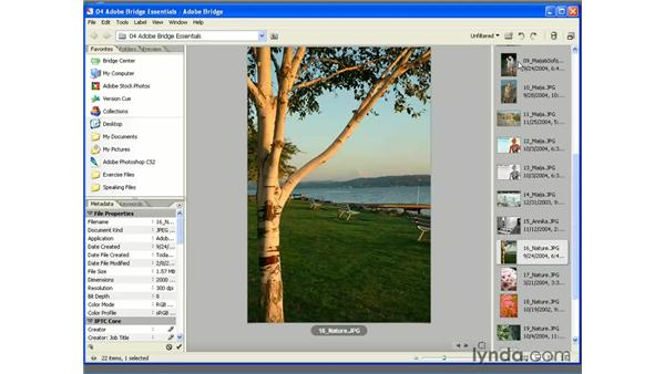 Changing the Workspace: Photoshop CS2 Essential Training
