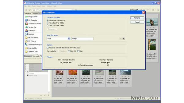 Using the Batch Rename Command: Photoshop CS2 Essential Training