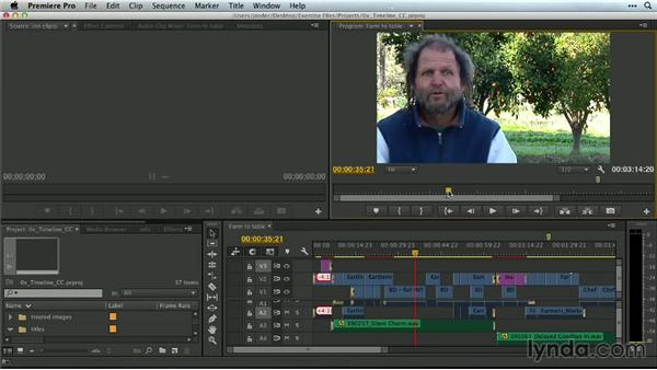 The Timeline and the program viewer: Premiere Pro Guru: Mastering the Timeline