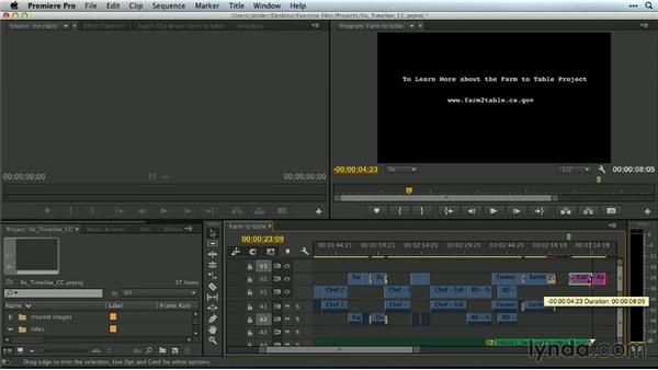 Experimenting with the Timeline: Premiere Pro Guru: Mastering the Timeline