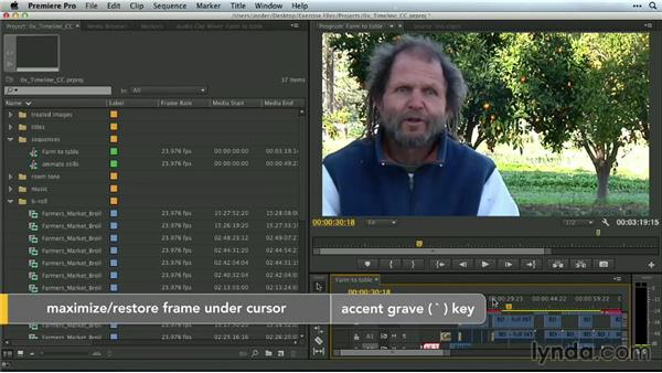 The Timeline and workspaces: Premiere Pro Guru: Mastering the Timeline