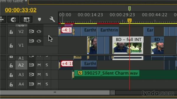 Marking the Timeline: Premiere Pro Guru: Mastering the Timeline