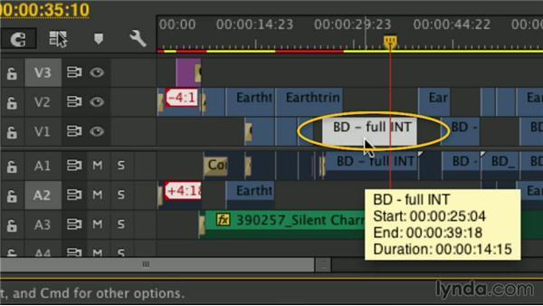 Link sources: Premiere Pro Guru: Mastering the Timeline