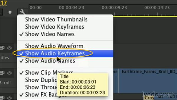 Adjust display settings: Premiere Pro Guru: Mastering the Timeline
