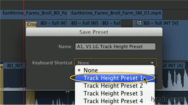 Saving and managing track presets: Premiere Pro Guru: Mastering the Timeline