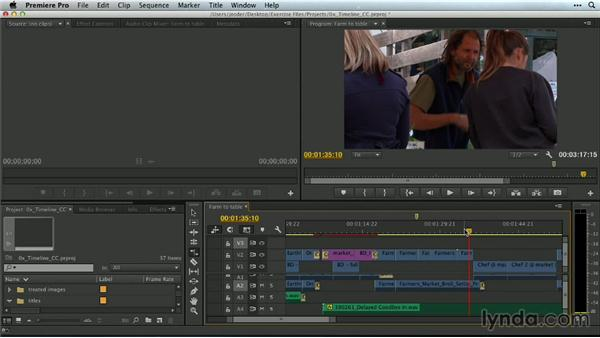 Tools and the Timeline: Premiere Pro Guru: Mastering the Timeline