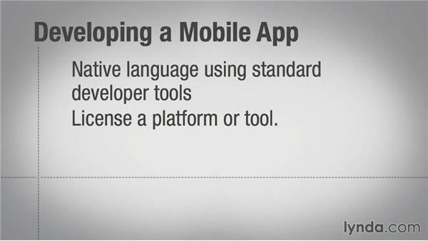 Platform and development tool considerations: Mobile Marketing Fundamentals