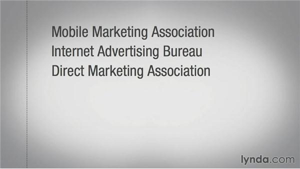 Understanding mobile guidelines and standards: Mobile Marketing Fundamentals