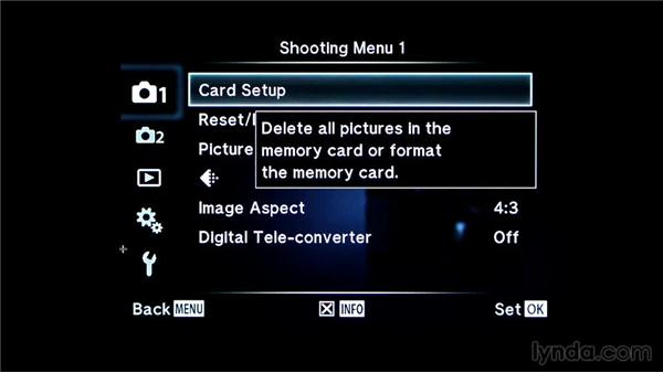 Next steps: Recovering Photos from Memory Cards