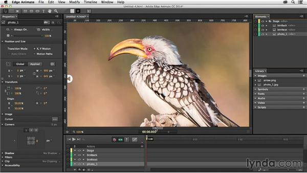 Importing graphics: Creating a Slideshow with Edge Animate