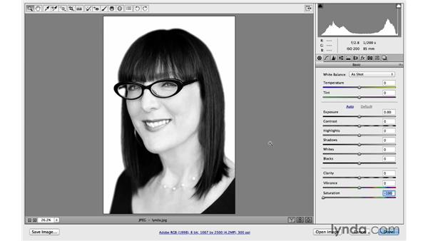 Previews in CC versus CC 2014: Photoshop CC for Photographers: Camera Raw 8 Fundamentals