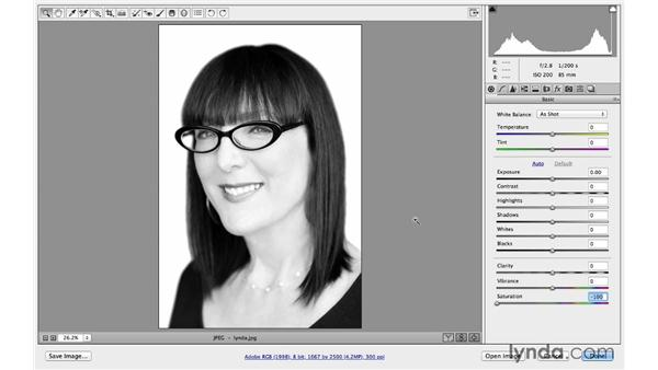 Previews in CC versus CC 2014: Photoshop CC for Photographers: Camera Raw 8 Intermediate