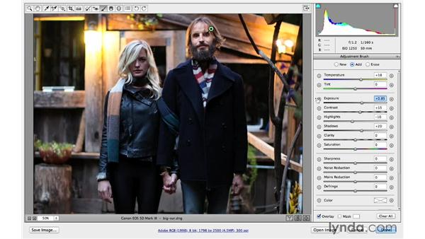Duplicating Adjustment Brush settings (CC 2014): Photoshop CC for Photographers: Camera Raw 8 Intermediate