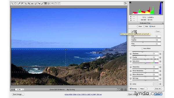 Modifying adjustments with the brush tools (CC 2014): Photoshop CC for Photographers: Camera Raw 8 Intermediate