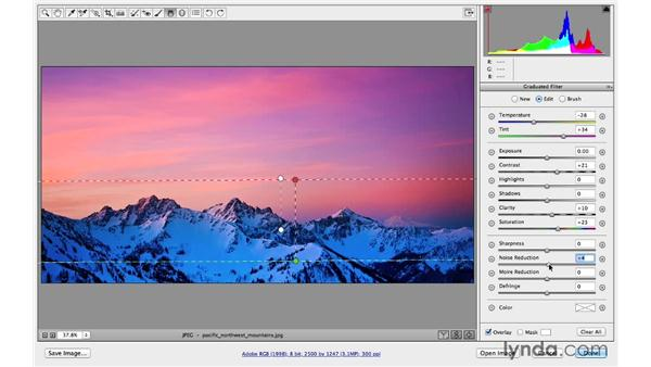 Creative color and effects (CC 2014): Photoshop CC for Photographers: Camera Raw 8 Intermediate
