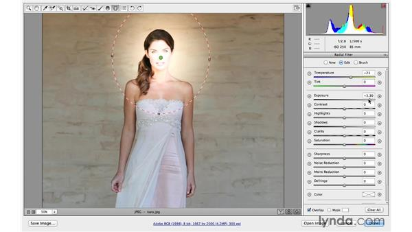 Introducing the Radial filter (CC 2014): Photoshop CC for Photographers: Camera Raw 8 Intermediate
