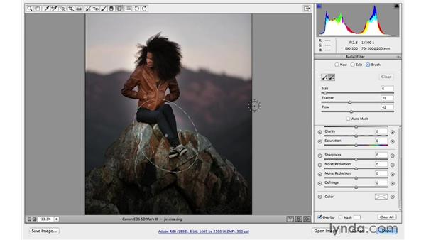 Duplicating and brushing in Radial filter effects (CC 2014): Photoshop CC for Photographers: Camera Raw 8 Intermediate