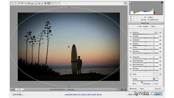 (CC 2014)Radial filter workflow tips: Photoshop CC for Photographers: Camera Raw 8 Intermediate