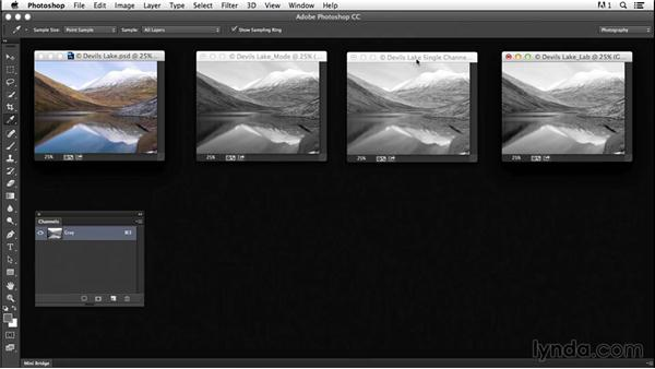 Exploring methods for creating grayscale images: Creating Black-and-White Landscape Photos with Photoshop