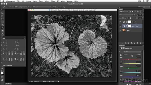 Creating contrast from colors: Creating Black-and-White Landscape Photos with Photoshop
