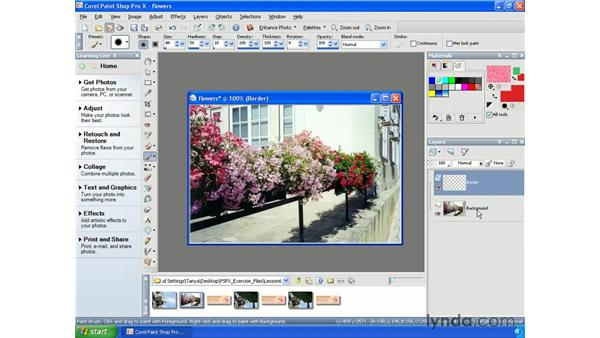 Creating, duplicating and deleting layers: Paint Shop Pro X Essential Training
