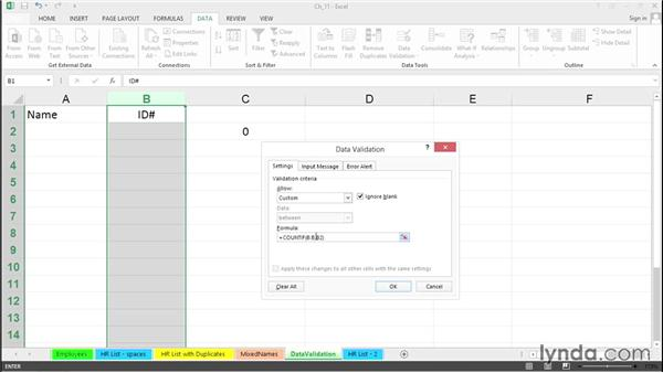 Ensure unique entries with data validation rules: Excel 2013 Tips and Tricks