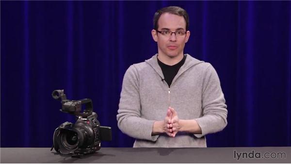 Choosing the right camera for motion (large sensor vs. small sensor): Camera Movement for Video Productions