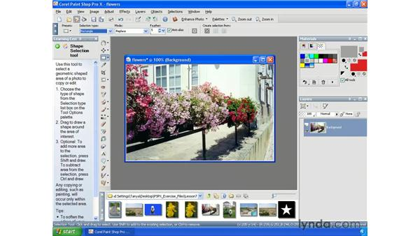 Saving and loading selections as alpha channels: Paint Shop Pro X Essential Training