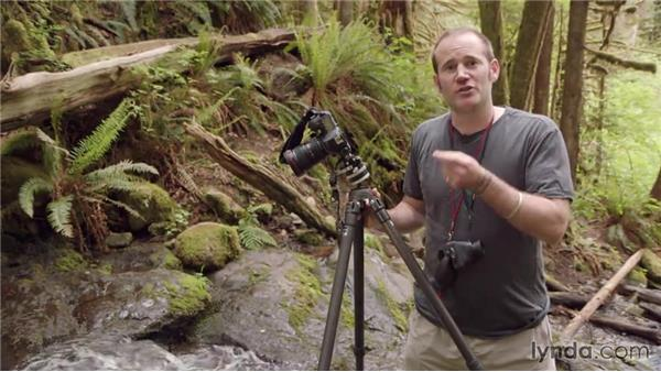 Setting the exposure for the waterfall shot: Photographing a Waterfall