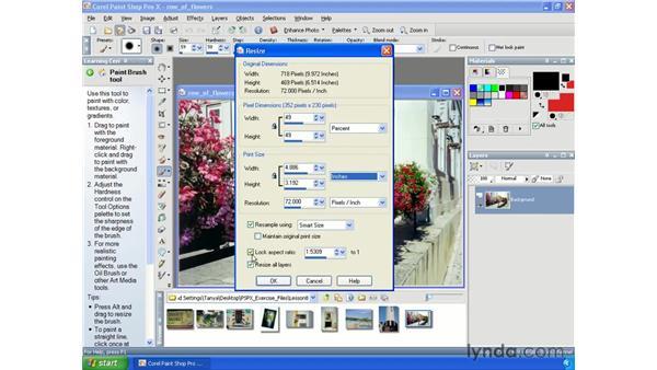 Resizing: Paint Shop Pro X Essential Training