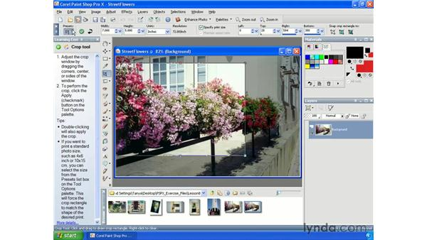 Cropping for specific print sizes: Paint Shop Pro X Essential Training