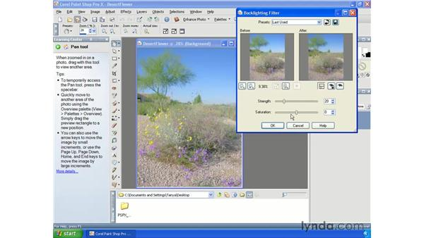 Correcting overexposed images: Paint Shop Pro X Essential Training