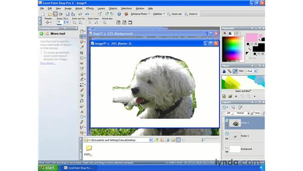 Creating collages by selecting, cutting and pasting: Paint Shop Pro X Essential Training