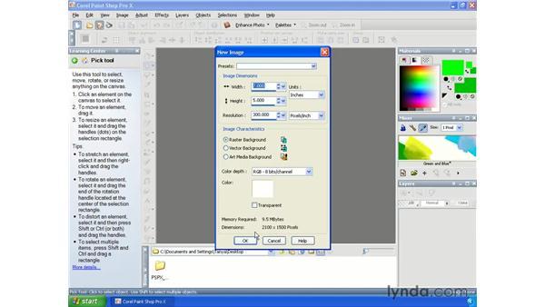Saving shapes: Paint Shop Pro X Essential Training