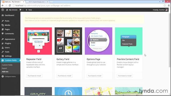 Extending ACF with premium extensions: WordPress Plugins: Advanced Custom Fields