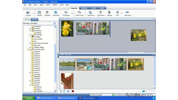 Selecting, moving and deleting photos: Paint Shop Pro X Essential Training